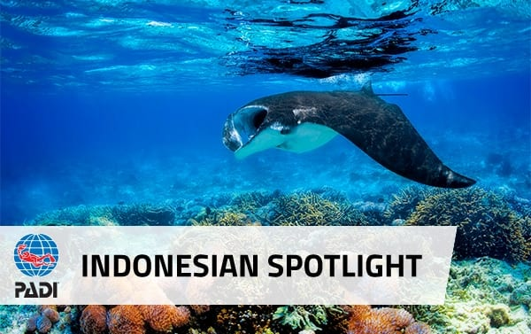 Indonesia is the PADI Vacation Spotlight