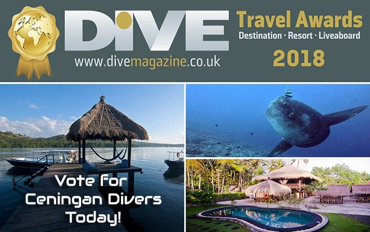 Dive AWARDS 2018
