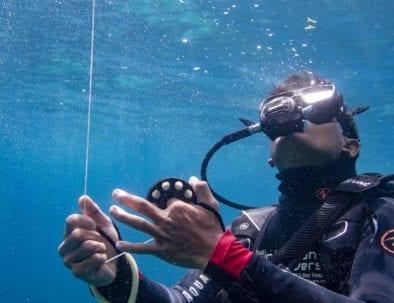 Guided Dives Nusa Penida MPA